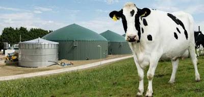 Sejarah, Komposisi, Pembentukan dan Instalasi Biogas