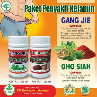 Original Obat Sipilis De Nature Kapsul Gang Jie Dan Gho Siah