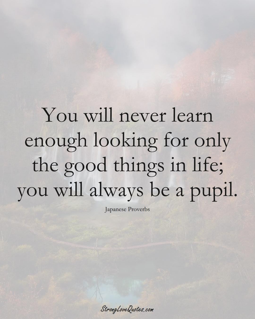 You will never learn enough looking for only the good things in life; you will always be a pupil. (Japanese Sayings);  #AsianSayings