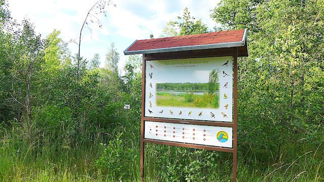 Flora und Fauna Schautafeln am Werbener See