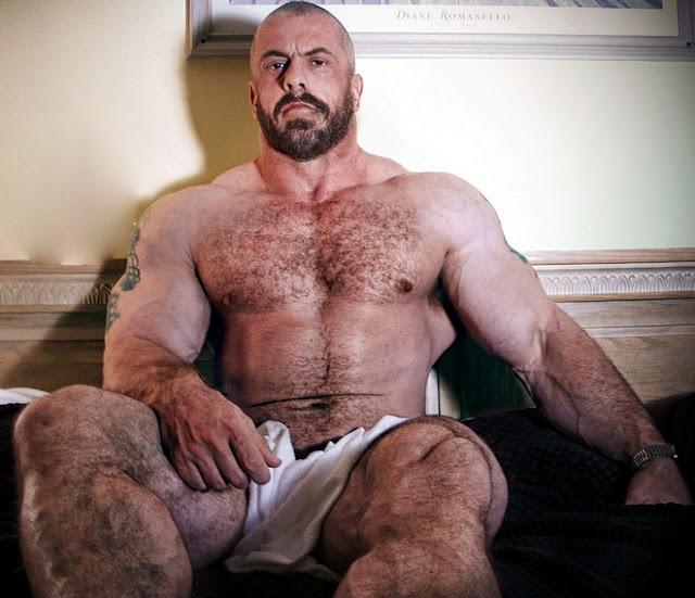 gay hairy bull man