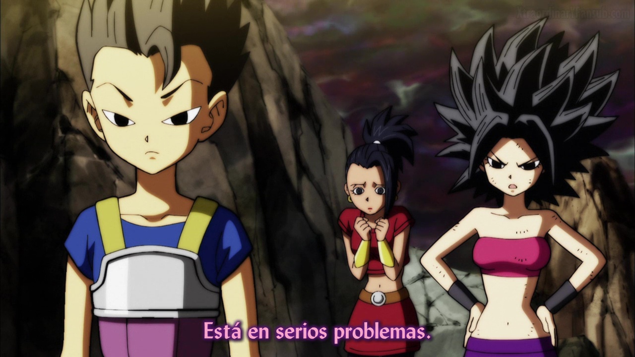 Ver Dragon Ball Super El Torneo del Poder - Capítulo 111