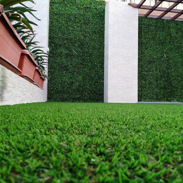 شركة زراعة الحدائق تصميم المزروعات بسلطنة عمان