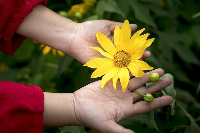 Pengembangan Inisiatif Ekonomi Bisa Atasi Kemiskinan Perempuan