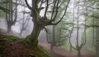 Taman Nasional Gorbea