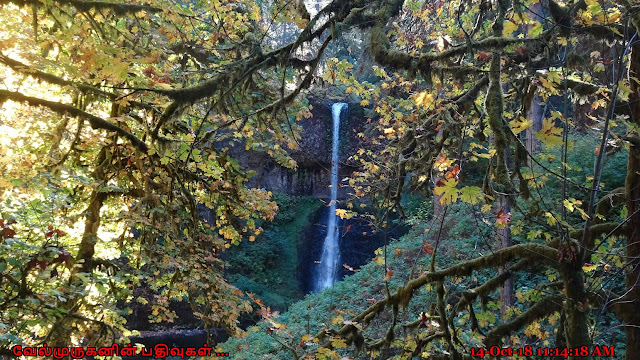 Middle North Falls in Silver Falls State Park