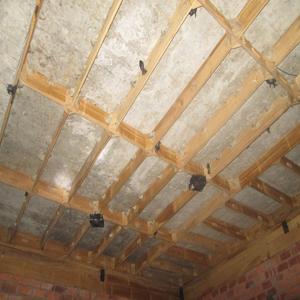 chim yến làm tổ trên mái nhà