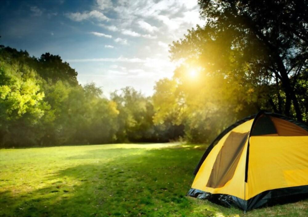 kamperen in de zomer