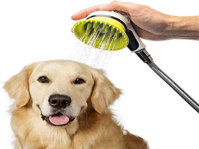 dog Cleaning Products