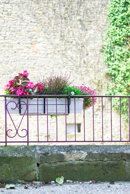 Blumen-Frankreich-Farebersviller