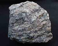 Batu genes