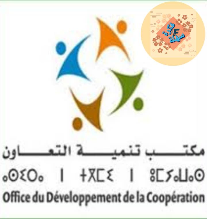 تأسيس تعاونية بالمغرب مراحل ونفقات الملف التأسيسي