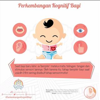 Cara Berpikir Bayi