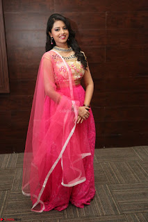 Geethanjali sizzles in Pink at Mixture Potlam Movie Audio Launch 038.JPG