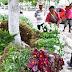 Feira de flores para o Dia de Finados é realizada em Caruaru
