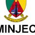 Avis de recrutement : 464 Jeunes Diplômés - Juniors Entrepreneurs Consultants SCAE, Plan Triennal Spécial Jeunes