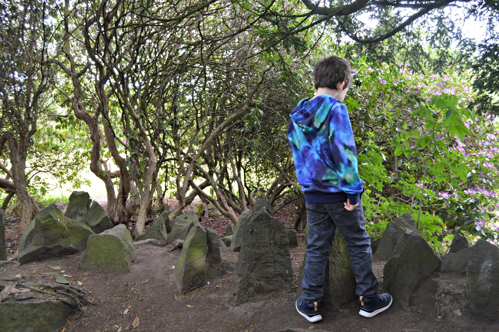 boy looking at rocks