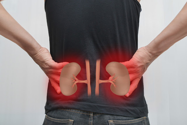 10 Kidney Damaging Habits