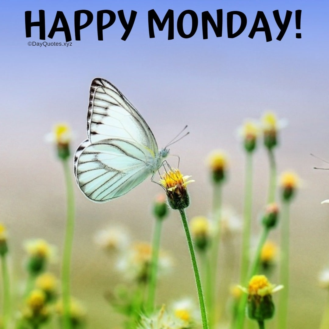 Happy Monday Images To Spread Freshness & Motivation