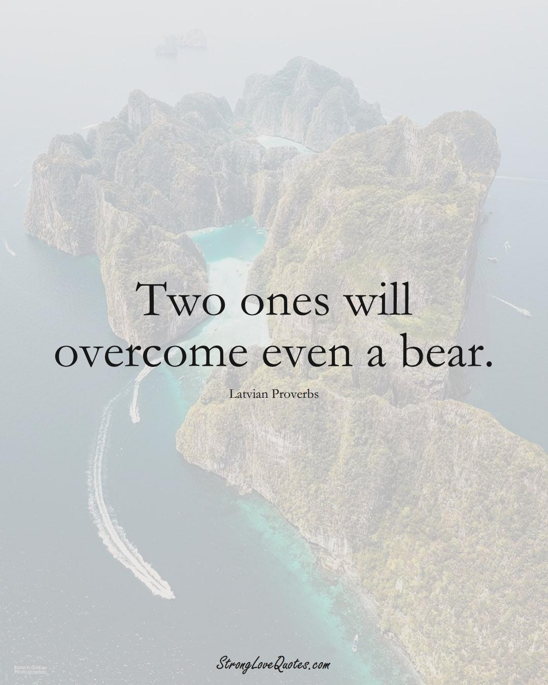 Two ones will overcome even a bear. (Latvian Sayings);  #EuropeanSayings