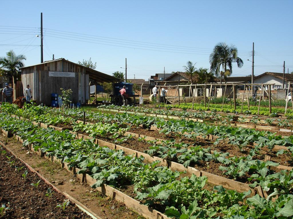 image Tiempo de plantación en la granja lo que hace mejor maridito