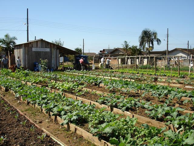 Tiempo de plantación en la granja lo que hace mejor maridito 7