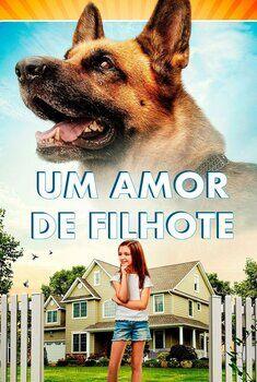 Um Amor de Filhote Torrent - WEB-DL 720p/1080p Dual Áudio