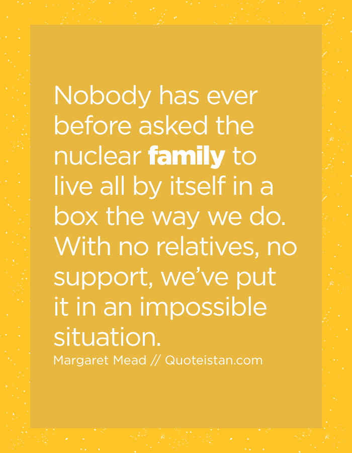 Nobody has ever before asked the nuclear family to live all by itself in a box the way we do. With no relatives, no support, we've put it in an impossible situation.