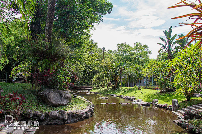 【花蓮瑞穗景點】蝴蝶谷溫泉渡假村。全台最大樟樹秘境泡湯熱點