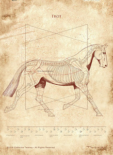"""DaVinci Trot Revealed"" print"