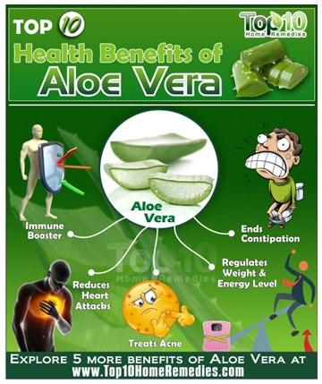 10 Best Health Benefits of Aloe Vera