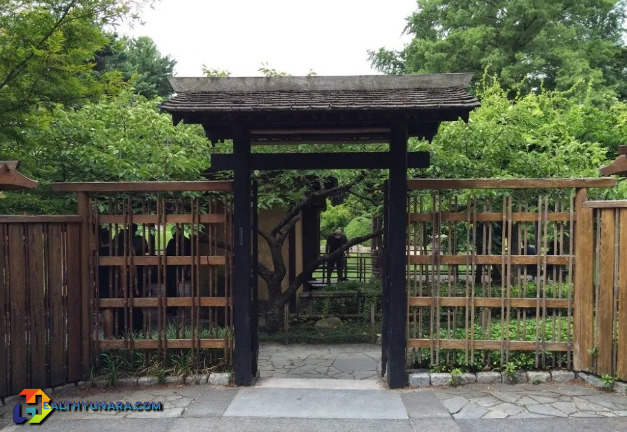 6 Japanese Style House Fence Minimalist Design
