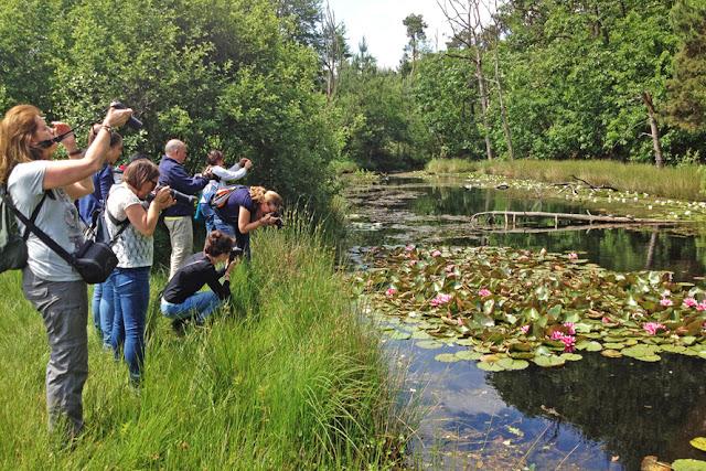 Wandelschoenen aan, en het bos in voor natuurfotografie onder leiding van vakfotograaf Hans van Nunen