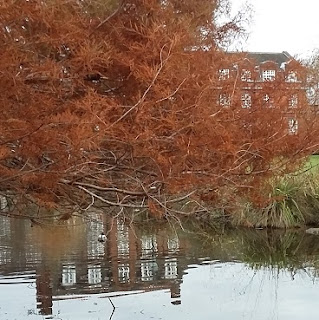 Picture of a red brick building and a tree with red leaves beside a lake when we went away for the weekend