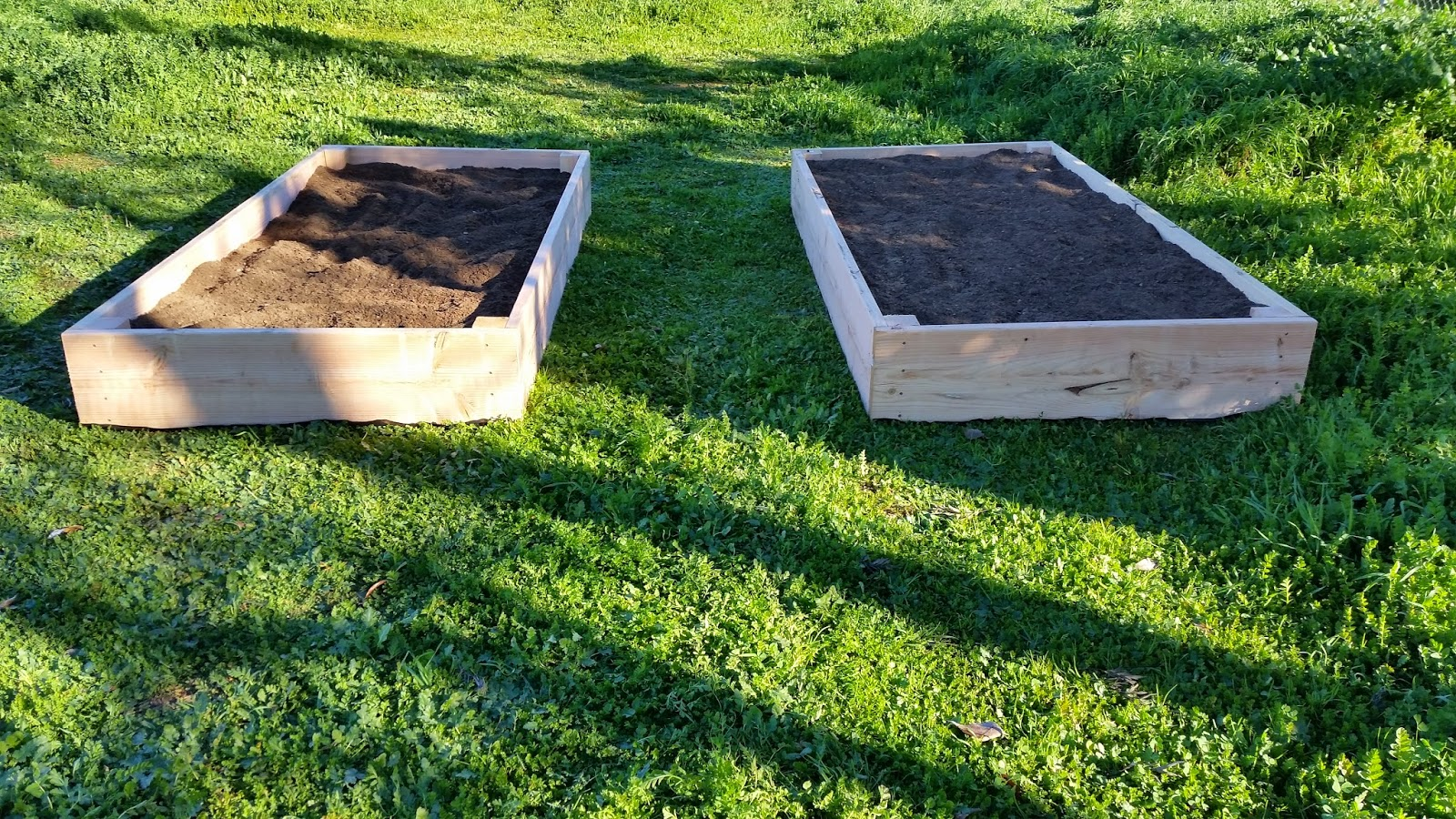 Build Your Own Raised Garden