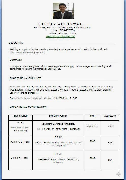 How To Write A Professional Profile Resume Genius Resume Template Essay  Sample Free Essay Sample Free  How To Write A Profile On A Resume