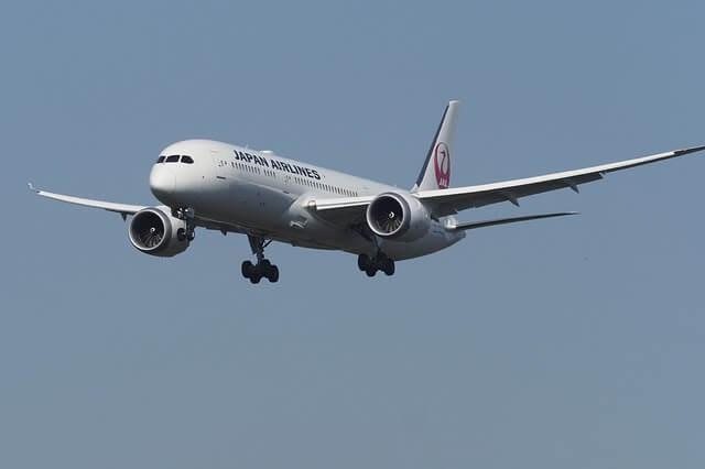بوينغ 787,طائرات الركاب,دريم لاينر