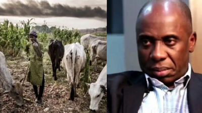 I Started Ruga In Rivers State But Wike Stopped It – Rotimi Amaechi (Video)