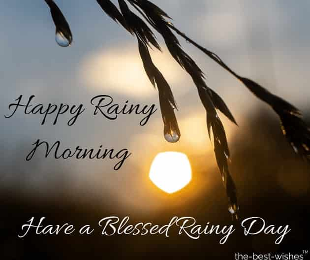 rainy morning wishes
