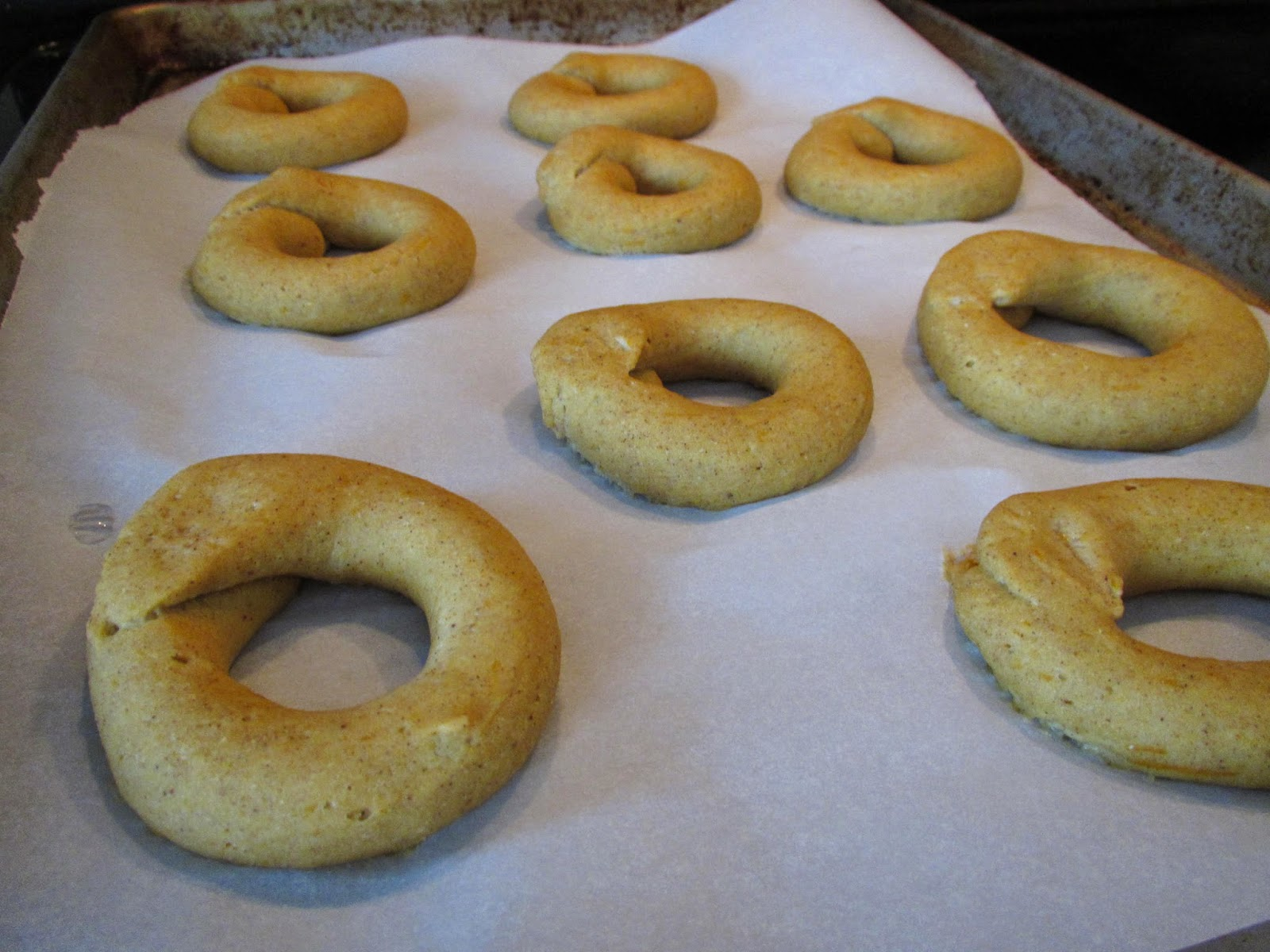 Gluten Free Pumpkin Bagels after rising