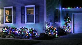 Professional Christmas Light Installer Ann Arbor