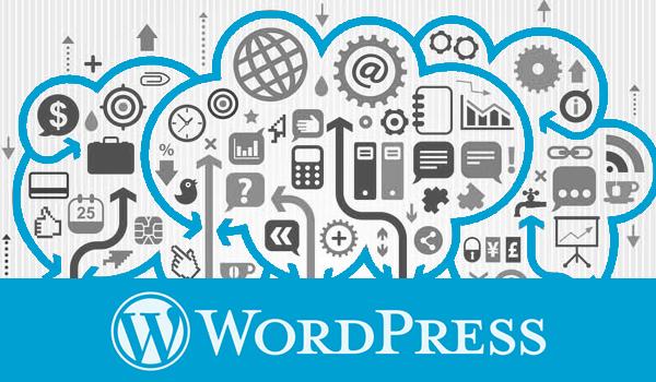Wordpress Devlopment Experts