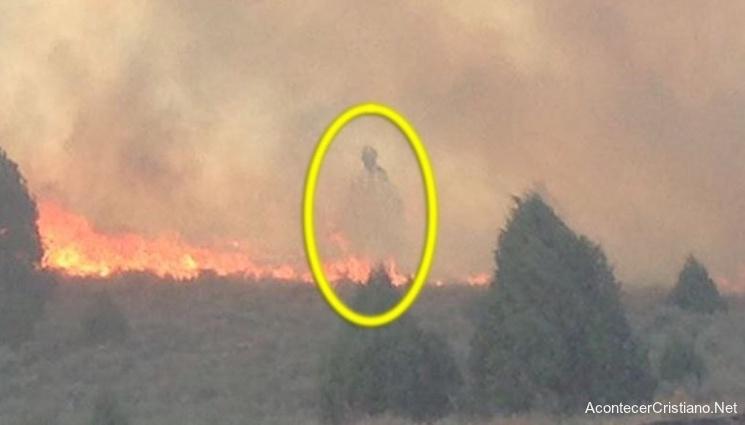Ángel aparece en incendio forestal