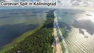 Curonian Spit in Kaliningrad