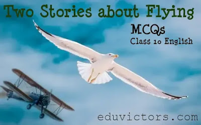 CBSE Class 10 - English (Lit.) - First flight – Chapter 3: Two Stories about Flying (MCQs)(#class10EnglishNotes)(#cbsenotes)(#eduvictors)