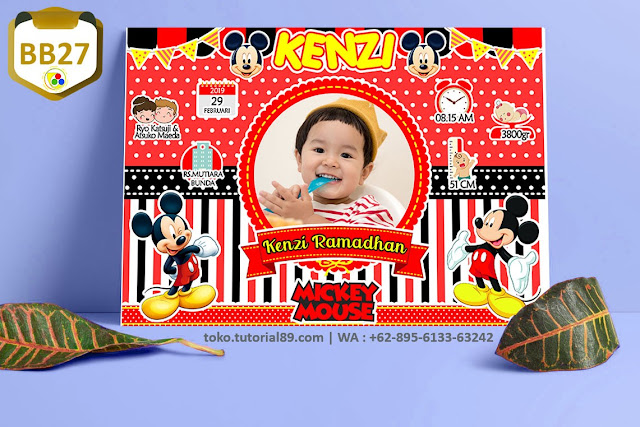 Biodata Bayi Costume Boy Girl Kode BB27 | Mickey Mouse