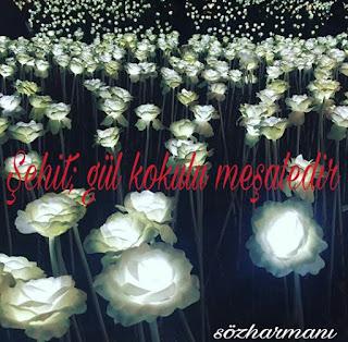 allah yolunda öldürülenler, ayet, gül kokusu, meşale, necip fazıl kısakürek, resimli mesajlar, resimli sözler, sakarya şiiri, şehit sözleri, şehitler ölmez vatan bölünmez,