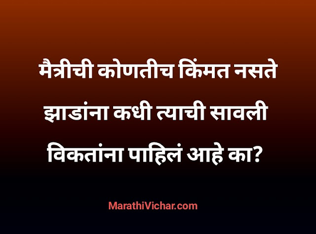 best friend marathi status