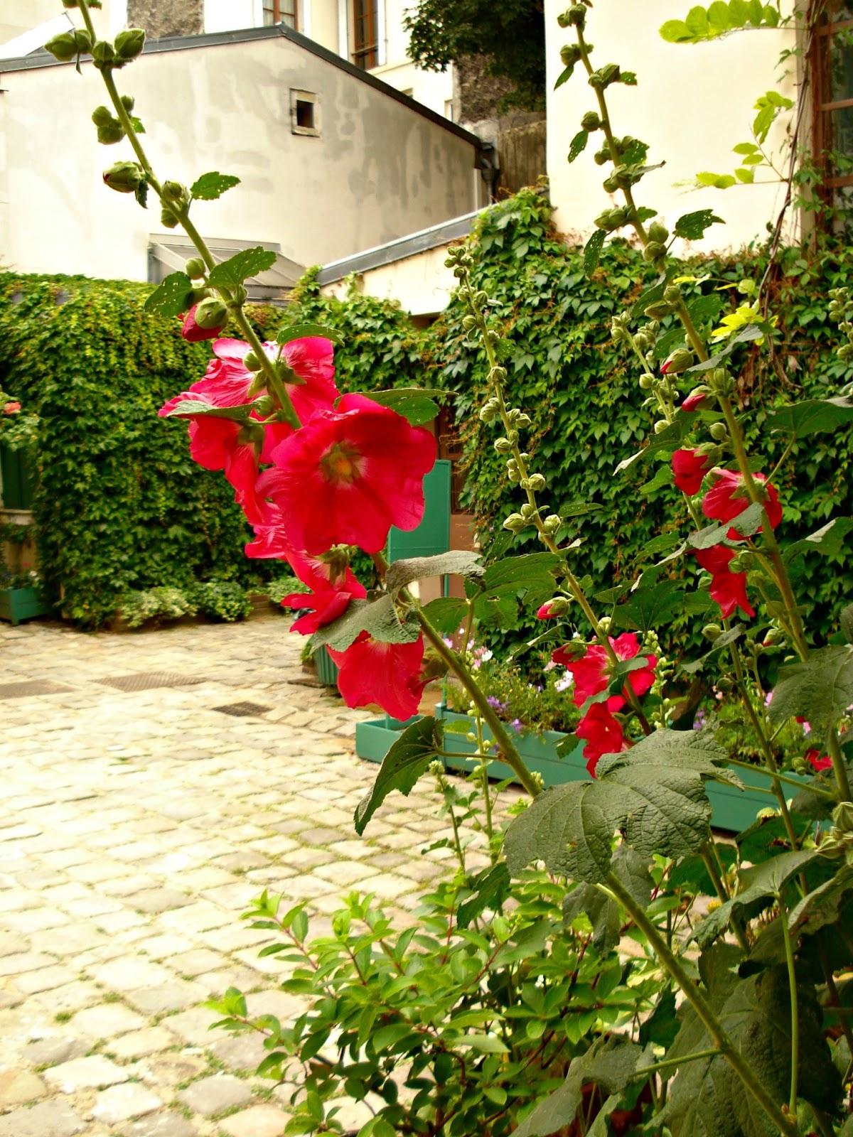 voir les roses tr mi res du mus e de la vie romantique see the hollyhocks at the romantic life. Black Bedroom Furniture Sets. Home Design Ideas