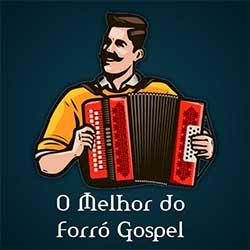 CD O Melhor Do Forró Gospel